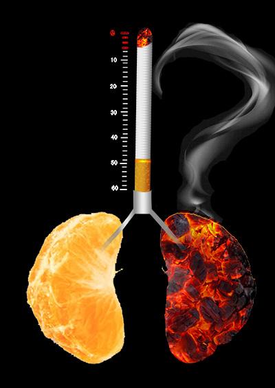 531世界无烟日公益海报背景素材